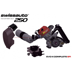 Swissauto 250 VT1 Senior engine with Fuel Injection