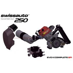 Swissauto 250 VT1 Senior engine with Fuel Injection