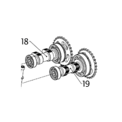 CAMSHAFT ASSEMBLY, EXHAUST