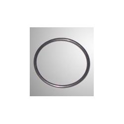 O-Ring inlaatspruitstuk