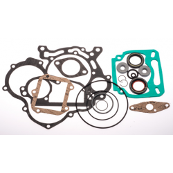 Gasket Complete Rotax Max