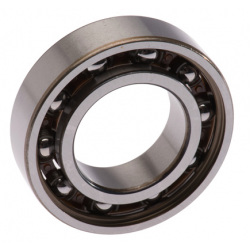 Balance Axle Bearing 6005TNH/C3