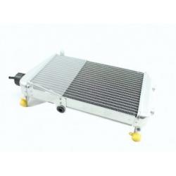 Radiateur compleet - DD2 -  Rotax Max