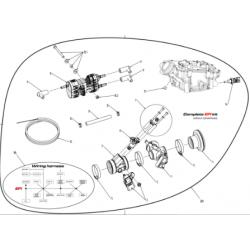 Compleet elektronische brandstofinjectie UPGRADE KIT VOOR Swissauto 250 VT1 (NO BOX ECU)