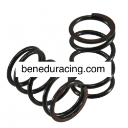 Valve spring hard (2 pieces_