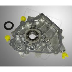 Crankcase cover B&S World Formula