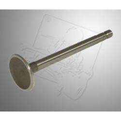 Intake valve B&S World Formula