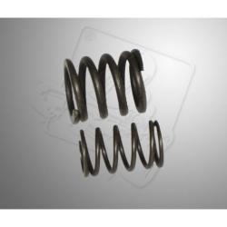 Valve spring B&S World Formula