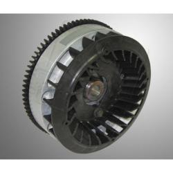 Flywheel B&S World Formula