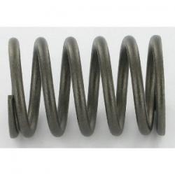 C-line valve spring GX160-200