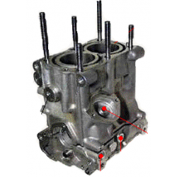 Cylinder Biland SA250