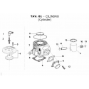 Cylinder TM KZ-R1